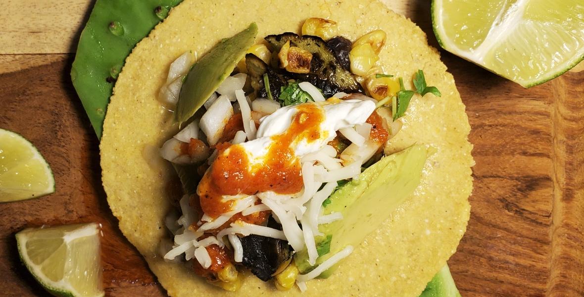 Prepared Cactus Tacos